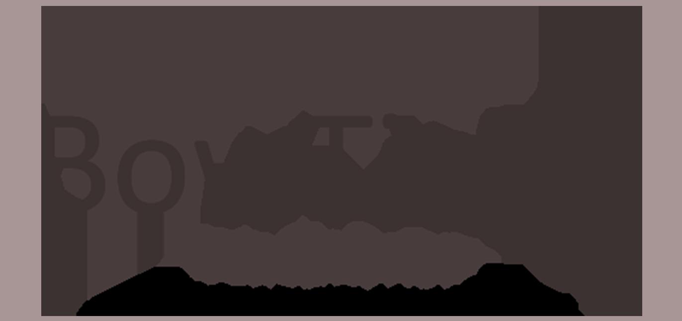 BowtieXP Practitioner